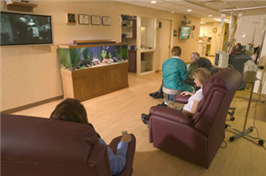 Group chemotherapy bay